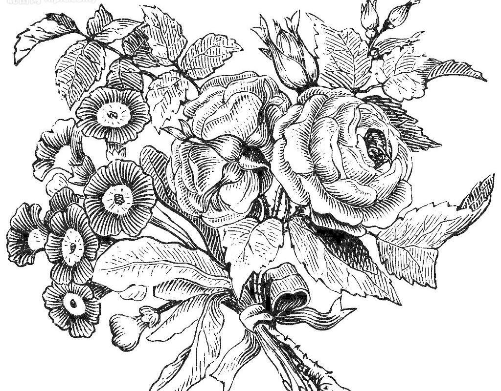 简单可爱花边如何画