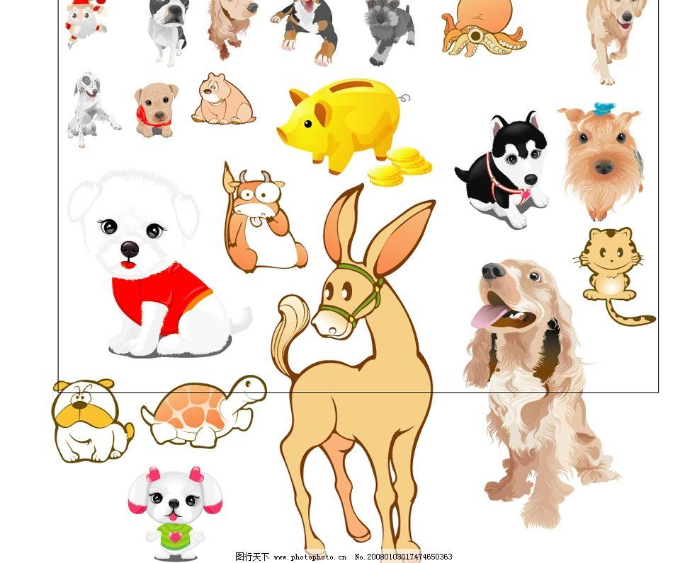 可爱动物,十二生肖,海底世界图片