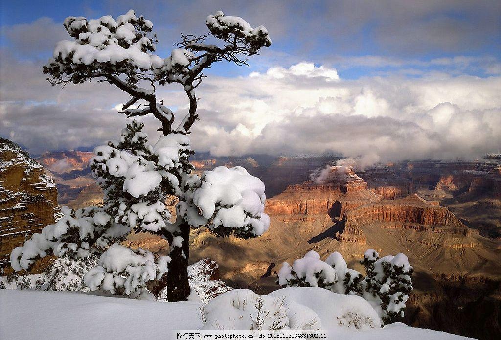 雪景121 风光图 风景 风景图 树林 太阳 阳光 夕阳 晨曦