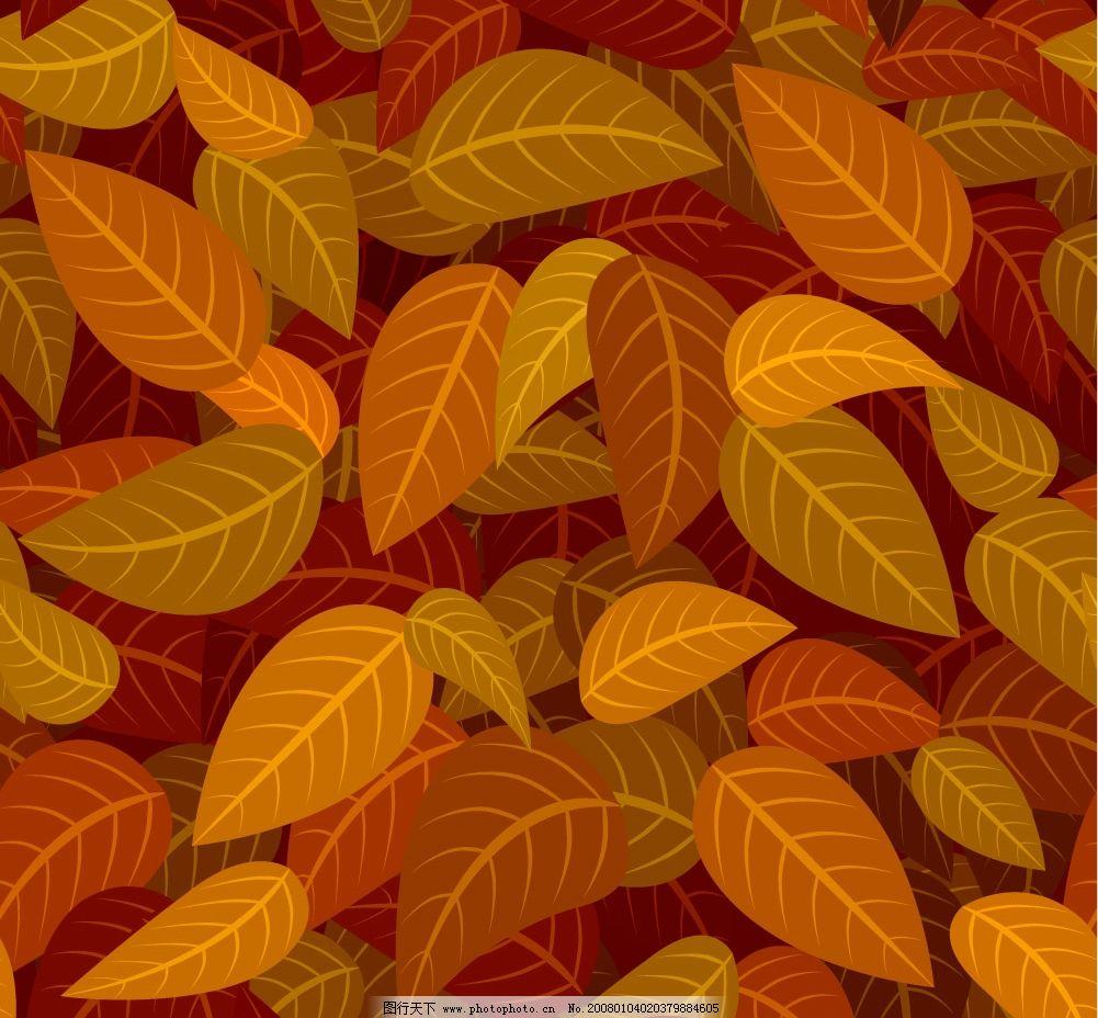树叶花边图片