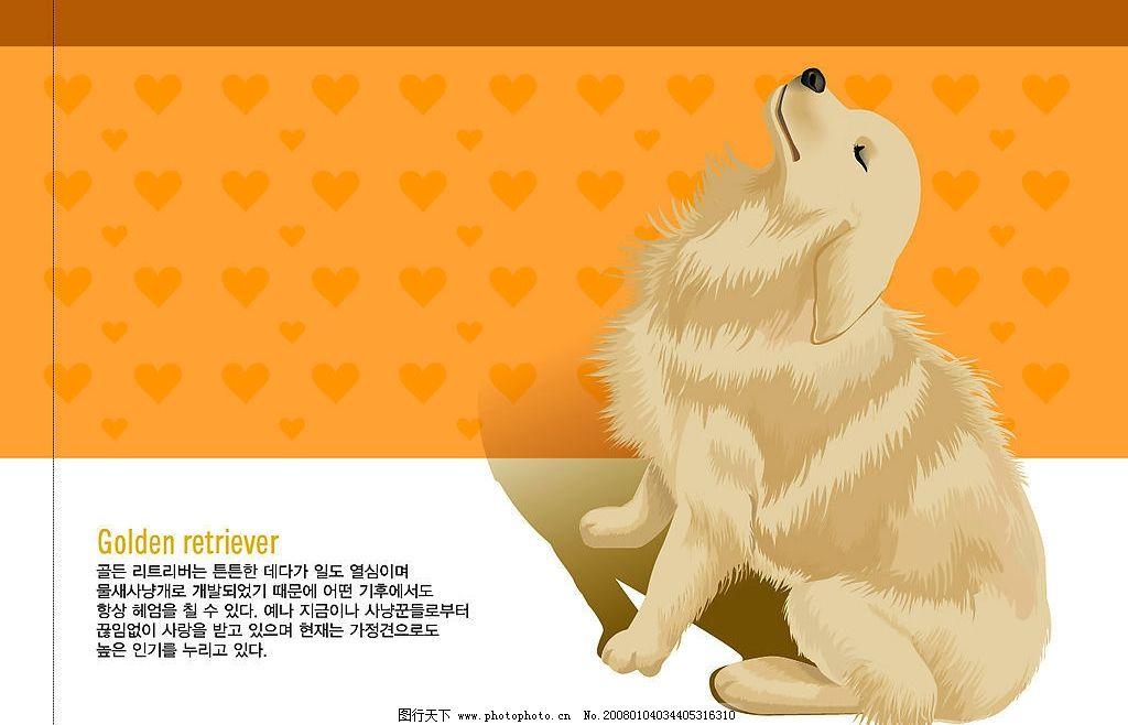 可爱动物 十二生肖 狗 可爱动物 十二生肖 海底世界 生物世界 其他