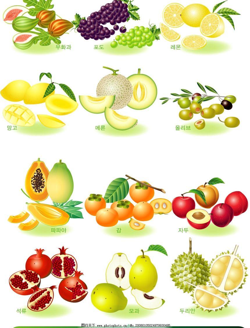 设计图库 生物世界 水果    上传: 2008-1-5 大小: 1.