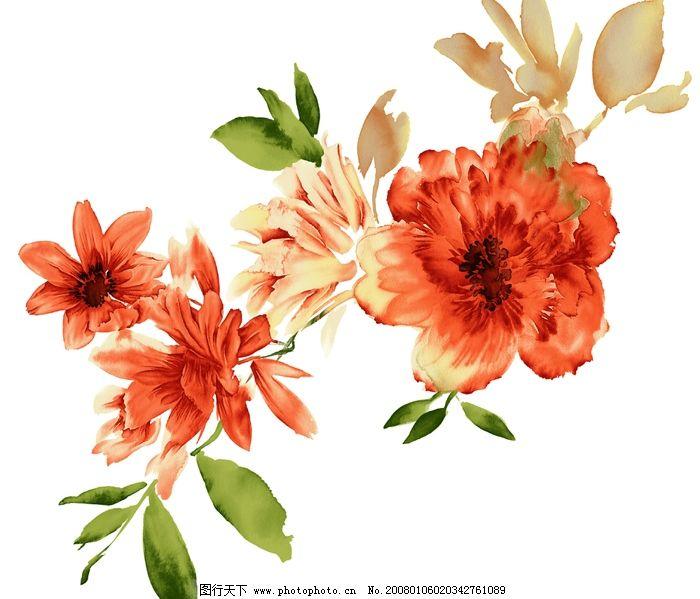 花花 带花的叶子 底纹边框