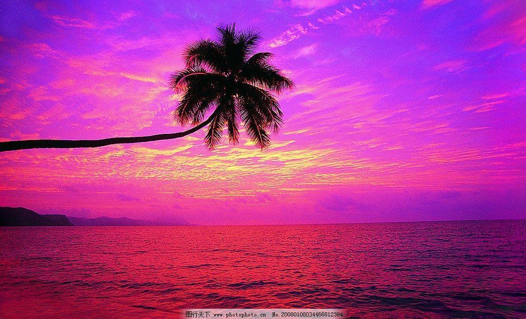 夕阳 椰树 大海 自然景观 山水风景 度假 大海 沙滩 摄影图库 72 jpg