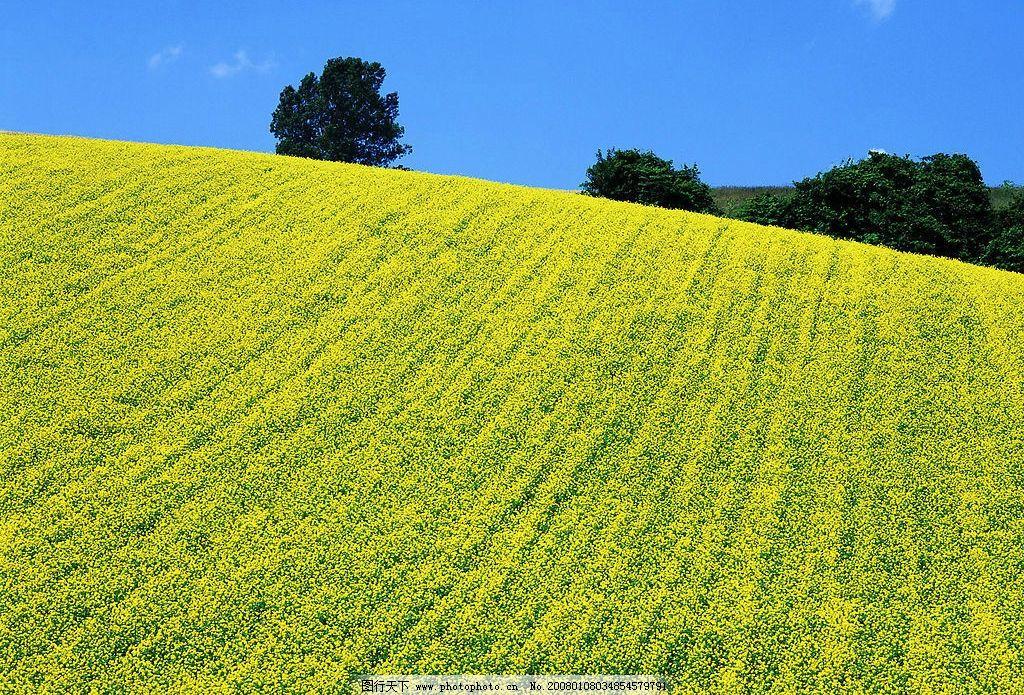 美丽景物 自然景观 自然风景 摄影图库