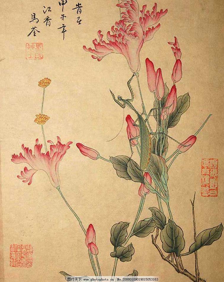 马荃花鸟绘画 花 鸟 花鸟 绘画 手绘 艺术 图画 绘图 书法 虫 花鸟