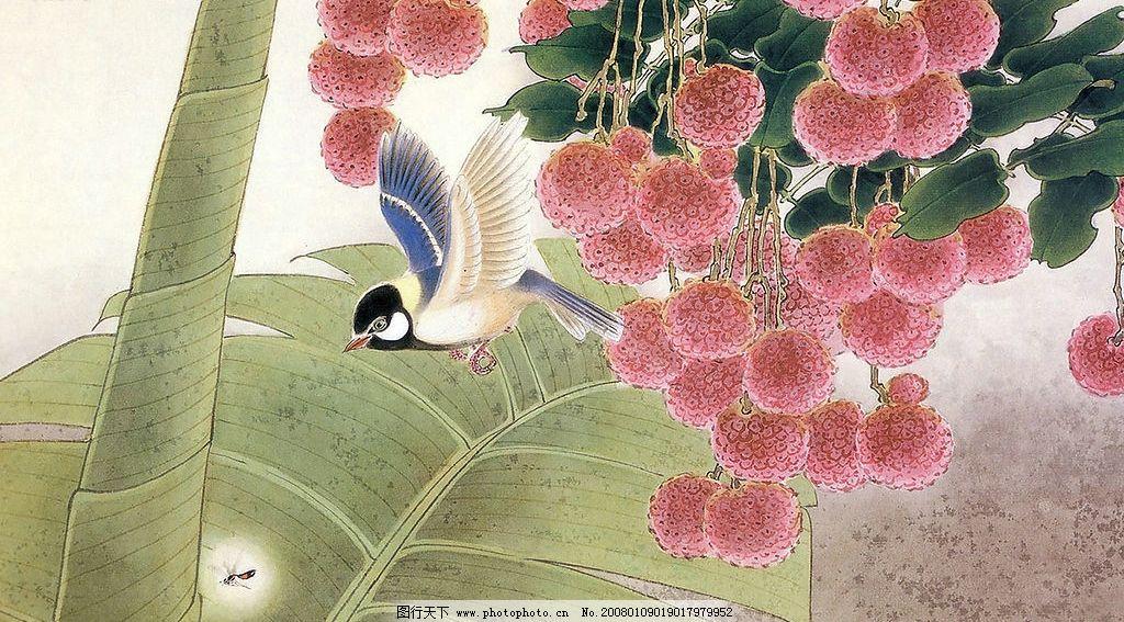 手绘花鸟 手绘 绘画 花 鸟 花鸟 图画 素材 文化艺术 绘画书法 中国画
