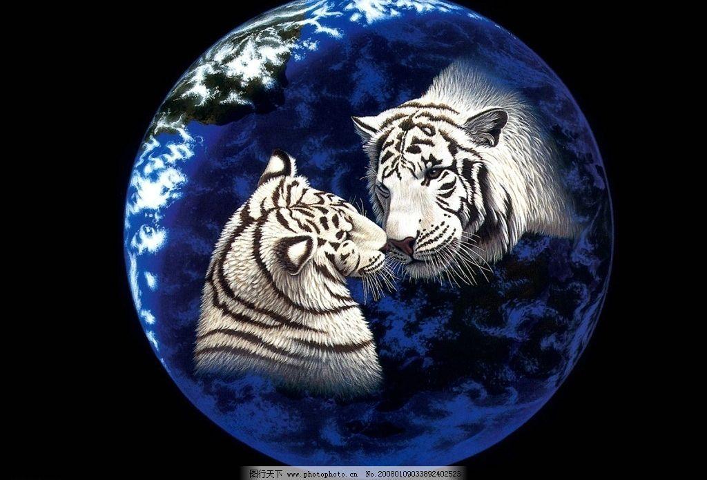 动物和地球图片