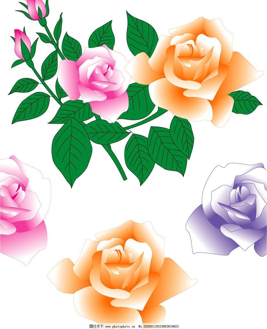 玫瑰花4 玫瑰 花 矢量 其他矢量 矢量素材 矢量图库   cdr