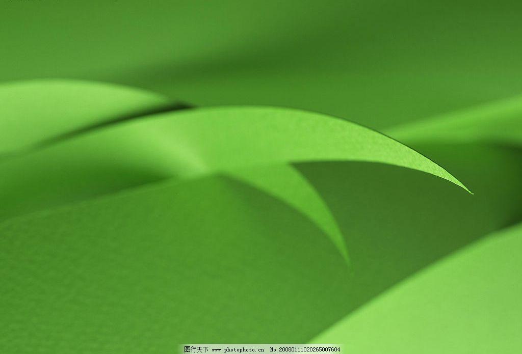 背景 壁纸 绿色 绿叶 树叶 植物 桌面 1024_695
