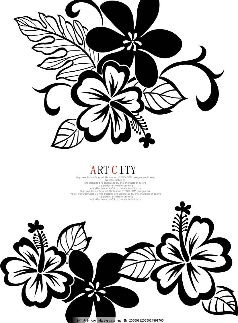 黑白鲜花 花 黑白 其他矢量 矢量素材 时尚花卉 矢量图库   ai