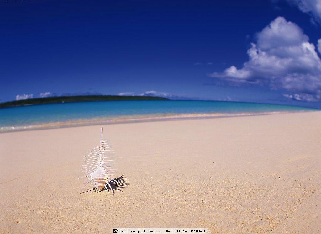 海滩 风景 自然景观 自然风光 沙滩 大海 海水 蓝天 白云 海螺