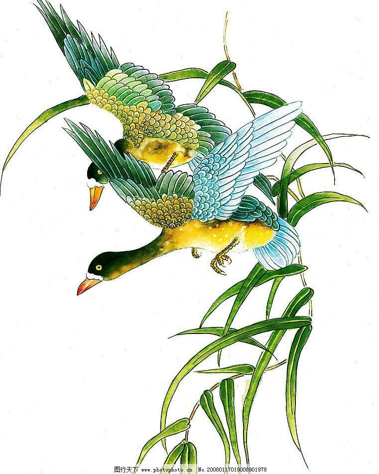 大雁的画图片
