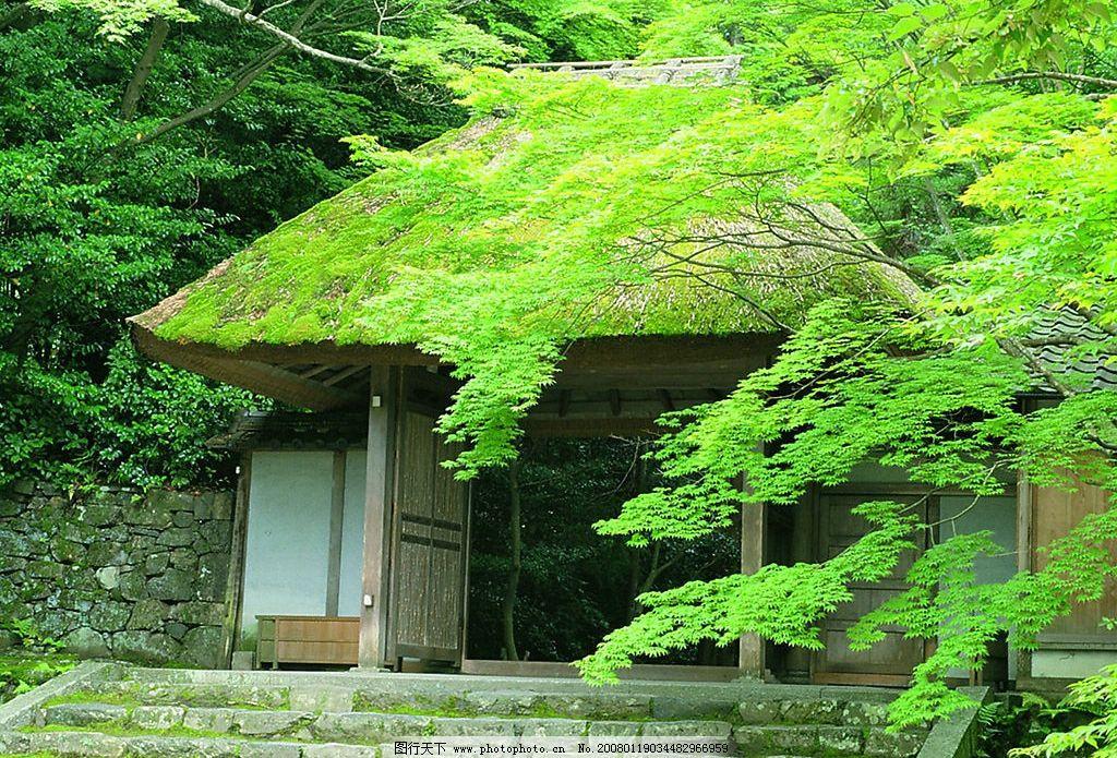 小屋 绿色 山路 自然景观 山水风景 摄影图库 150 jpg