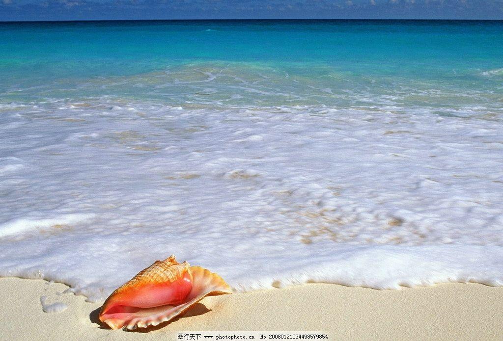 海边 沙滩 海螺 自然景观 山水风景 摄影图库 72 jpg