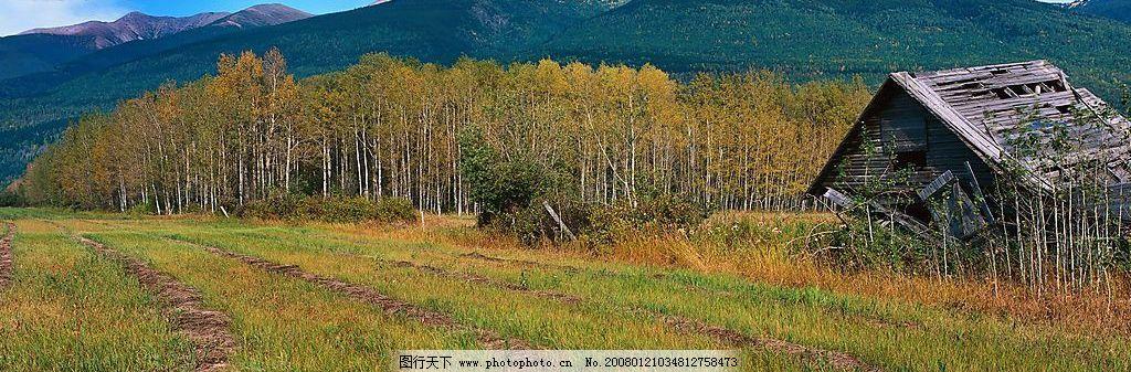 摄影图库 自然景观 自然风景  山中风景 山坡 高地 树林 小屋 自然