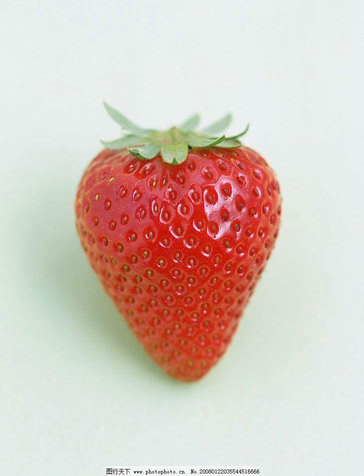 壁纸 矢量 水果 小果 植物 727_951 竖版 竖屏 手机