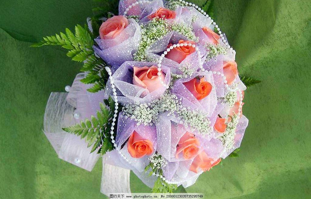 鲜花19 漂亮鲜花 精美包装 生物世界 花草 鲜花 摄影图库 300dpi jpg