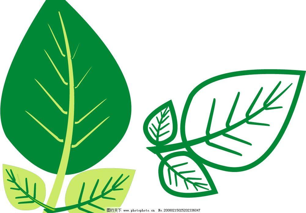 绿色叶子 绿叶 生物世界 树木树叶 树叶 矢量图库   cdr