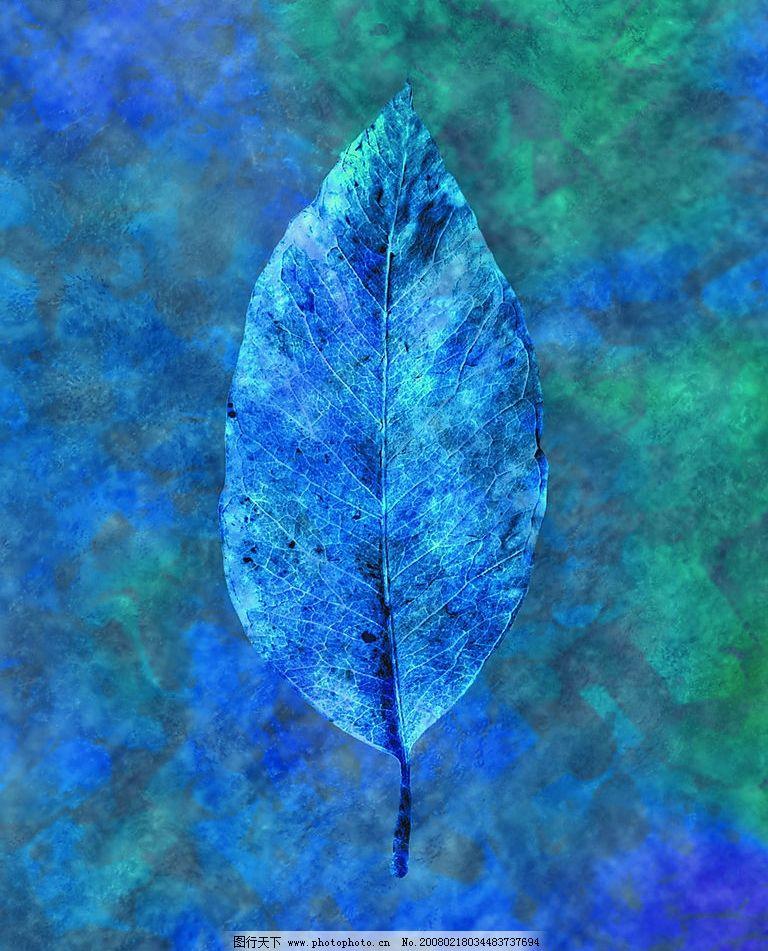 蓝色叶子图片_山水风景