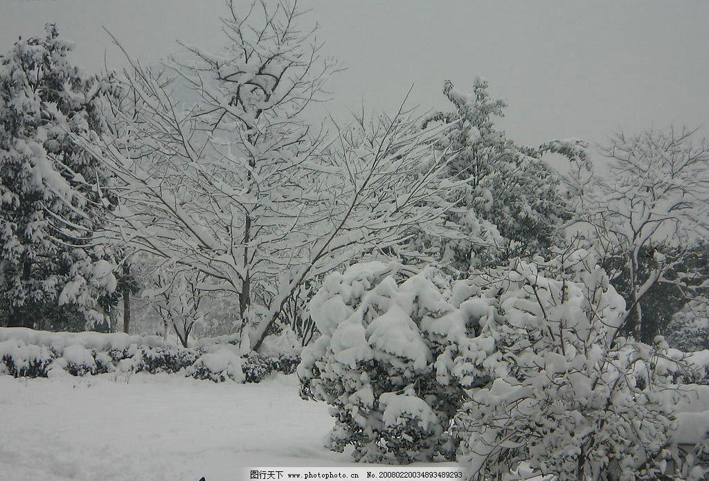 杭州雪景 杭州 雪景 大雪 自然景观 自然风景 摄影图库 180 jpg