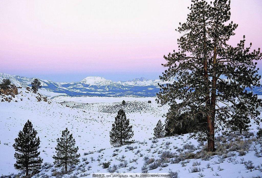 山地雪景 白雪 雪地 雪树 野草 雪山 云霞 天空 自然景观 山水风景