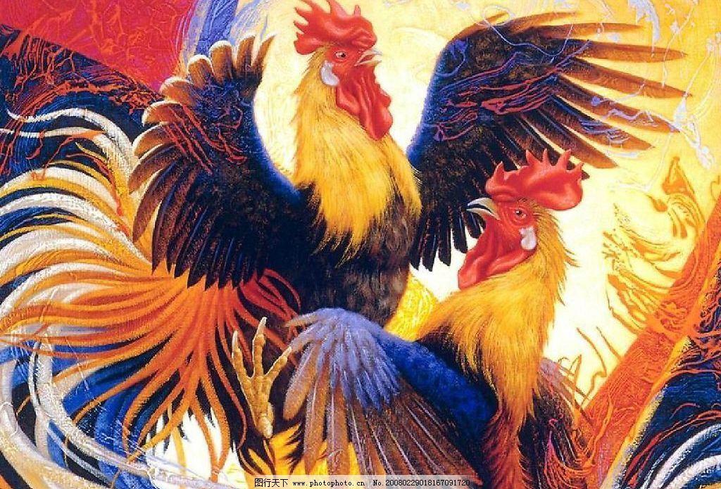 鸡鸣 生物世界