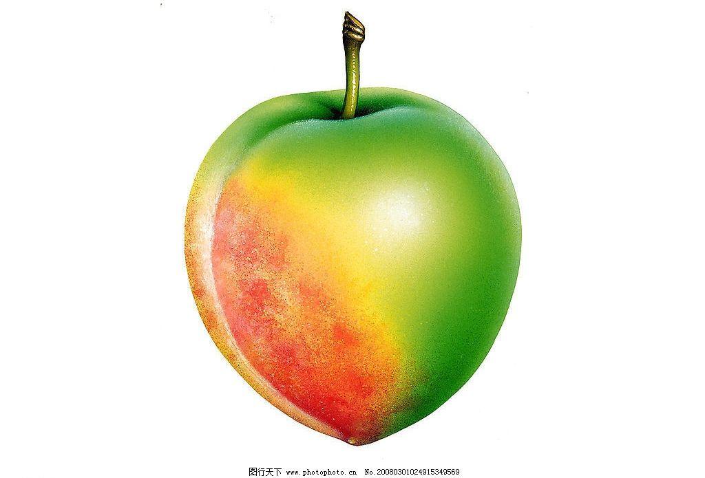 逼真水果之桃子图片
