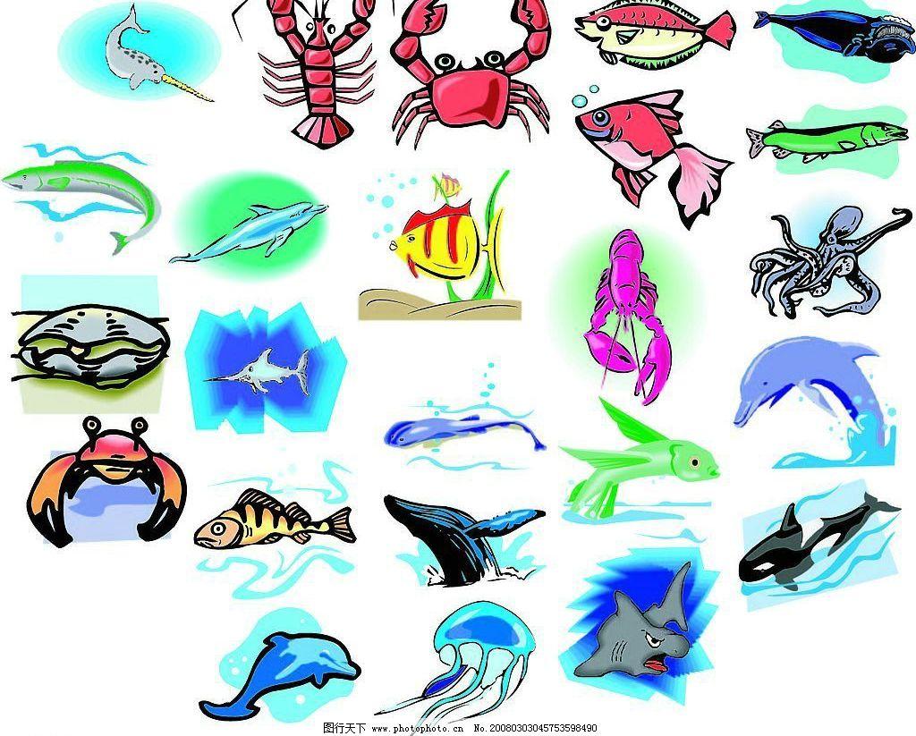 海洋生物170图片