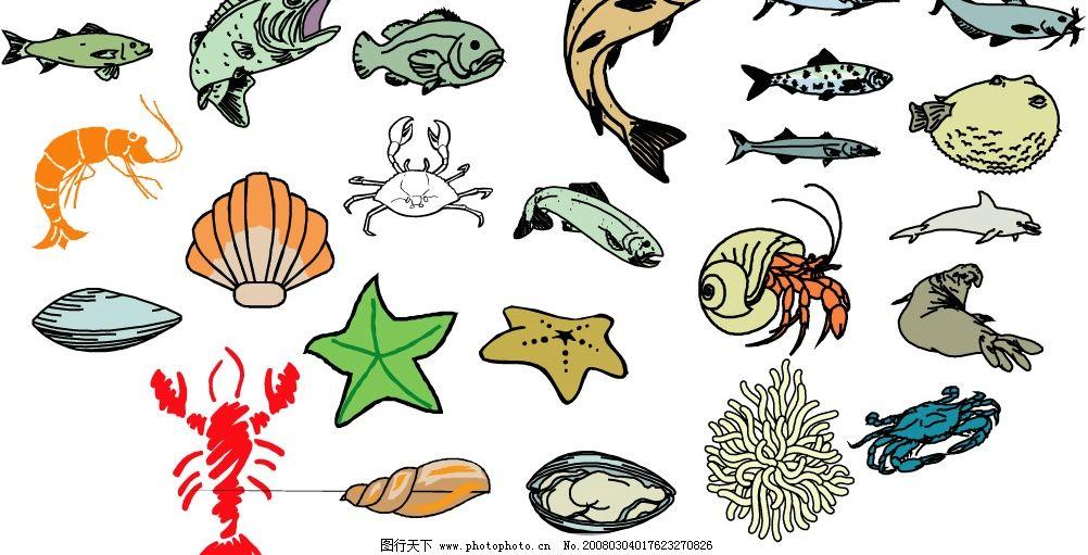 海洋生物468图片