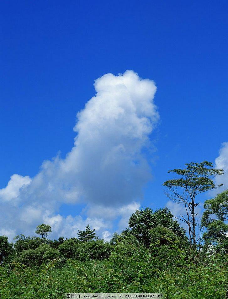 蓝天白云 蓝天.白云.树.绿地. 自然景观 山水风景 摄影图库 350 jpg