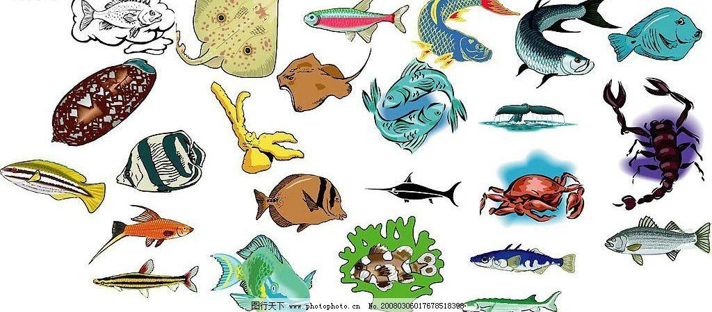 海洋生物796 水母 章鱼 水族鱼 海生物 贝壳 海豚 海瀨 海象 乌龟 鱼 海马 蛙 蝦 鯊鱼 鯨鱼 鳄鱼 生物世界 矢量图库 0 RAR AI 海洋生物