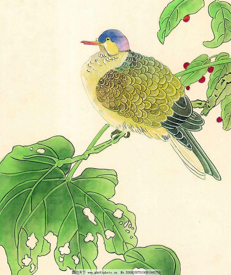 国画 鸟类 飞行动物 水彩