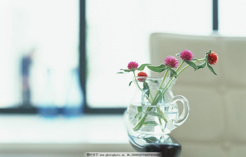花瓶 玻璃器皿 花朵 窗户 空间 其他 图片素材 素材图片 摄影图库 350