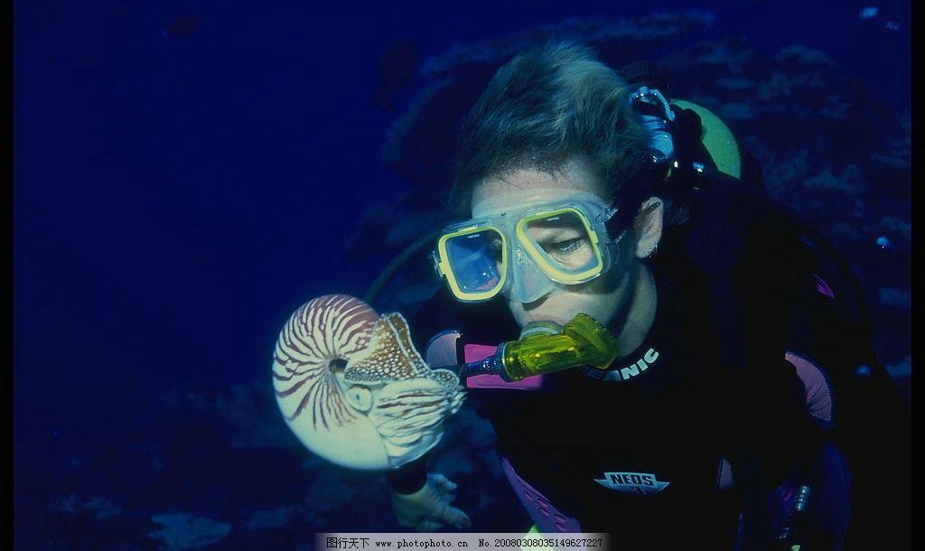 海底动物与潜水员图片