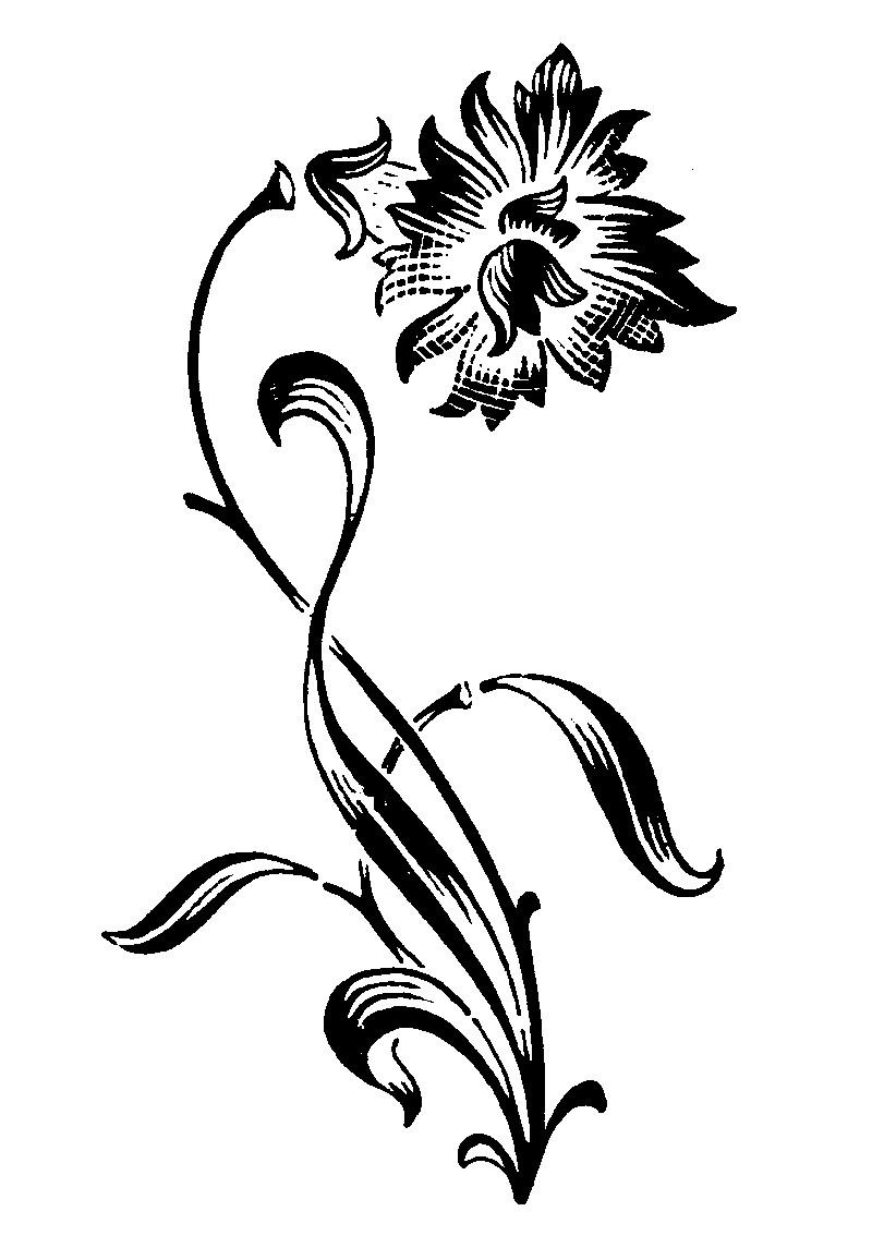 古典花纹0560