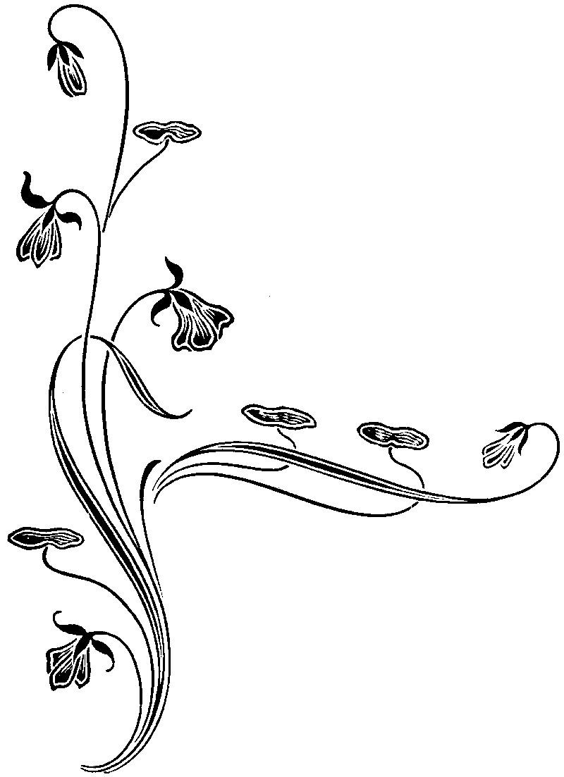 花纹字体怎么画