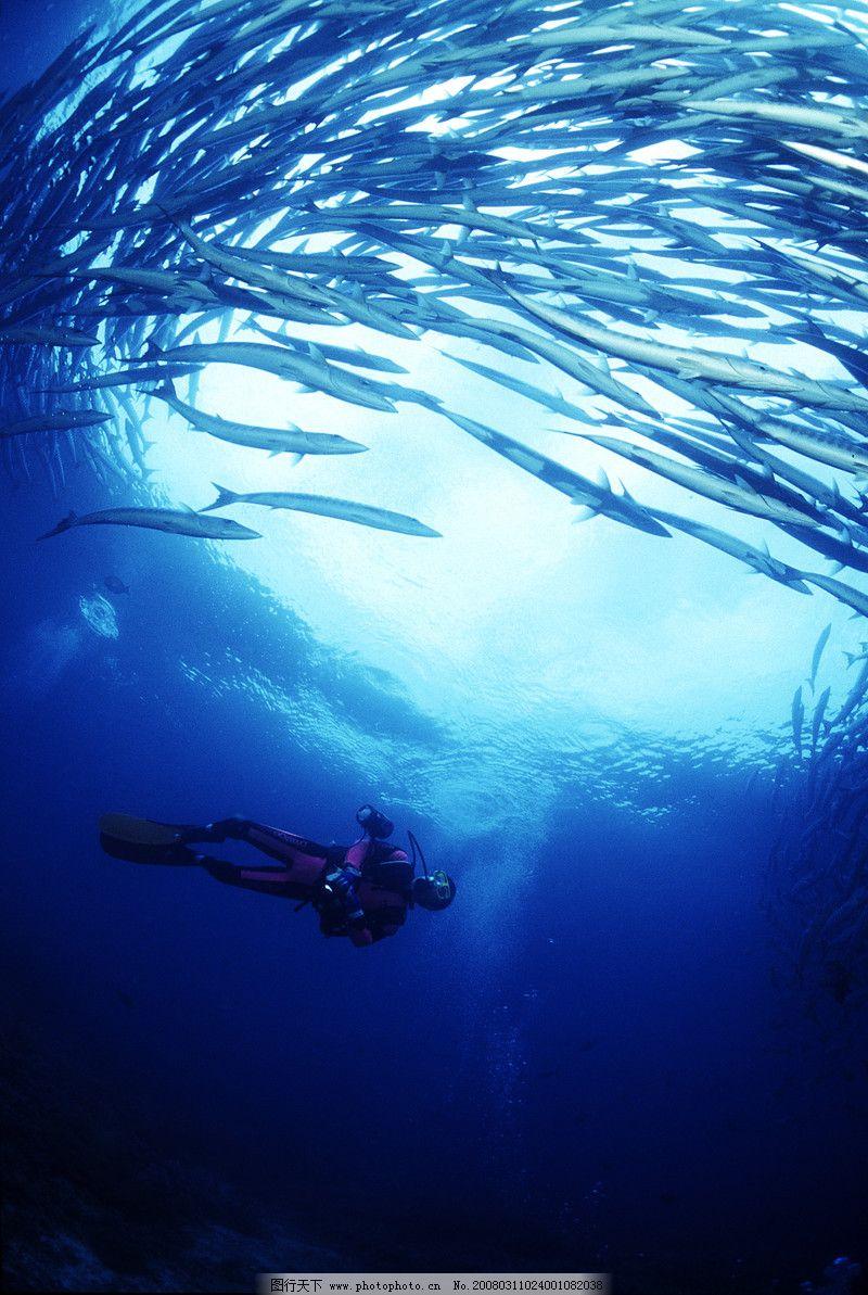 深海探秘0009 风景系列