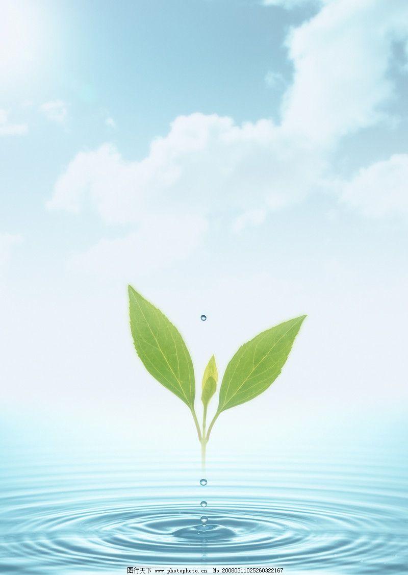 植物与环境手绘