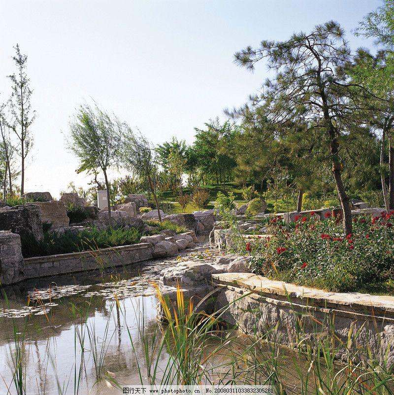 公园风景0044