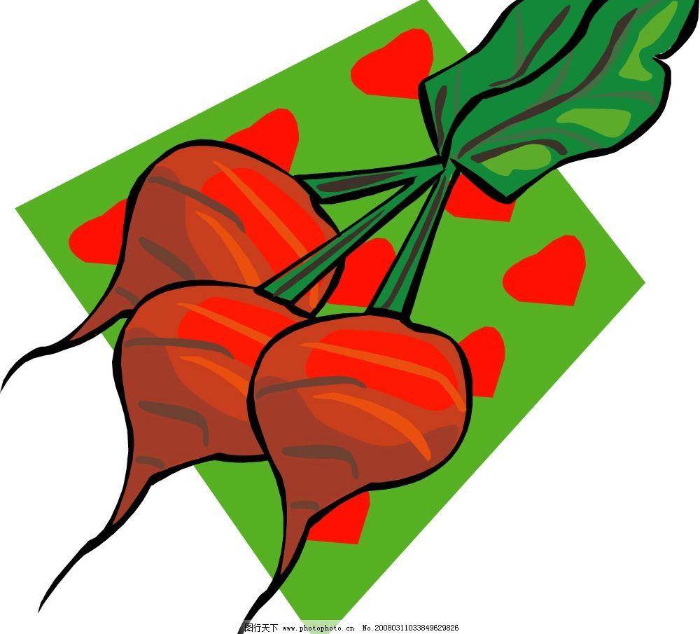 矢量红萝卜图片