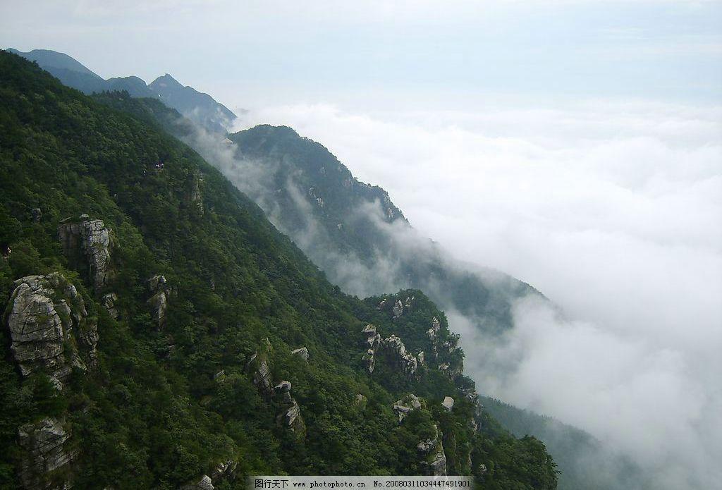庐山风光 自然景观 山水风景 山 中国名山 庐山 山谷 云雾 森林 摄影