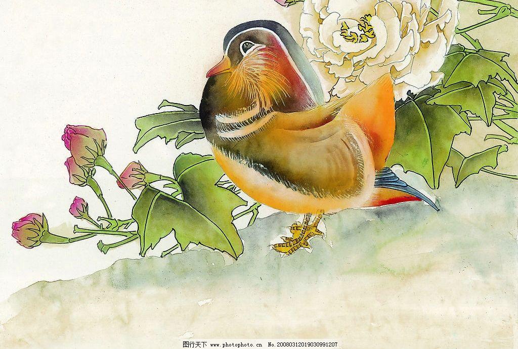 鸳鸯 水彩 国画 水墨画 花 文化艺术 绘画书法 设计图库 350 jpg