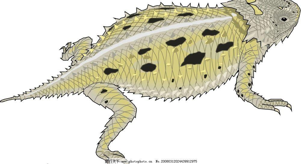 青蛙50 水底生物 动物 爬行动物 两栖动物 矢量图库 爬行类与两栖类