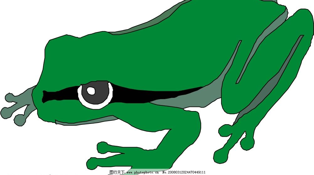 青蛙52 青蛙 水底生物 动物 爬行动物 两栖动物 生物世界 野生动物