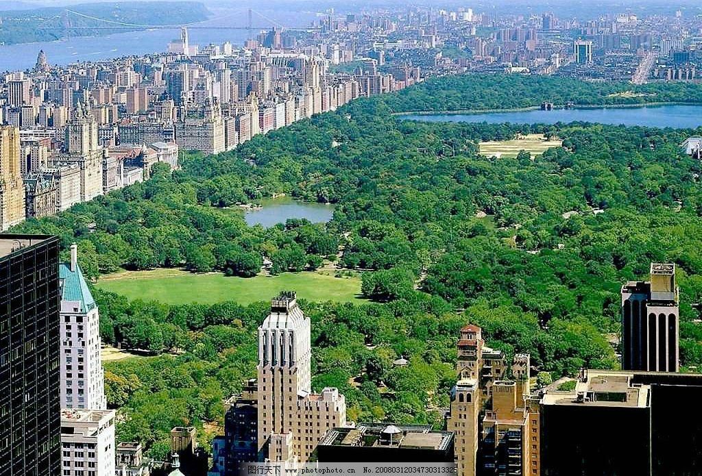 城市 建筑 森林 地产 高楼 建筑景观 风景摄影 摄影图库