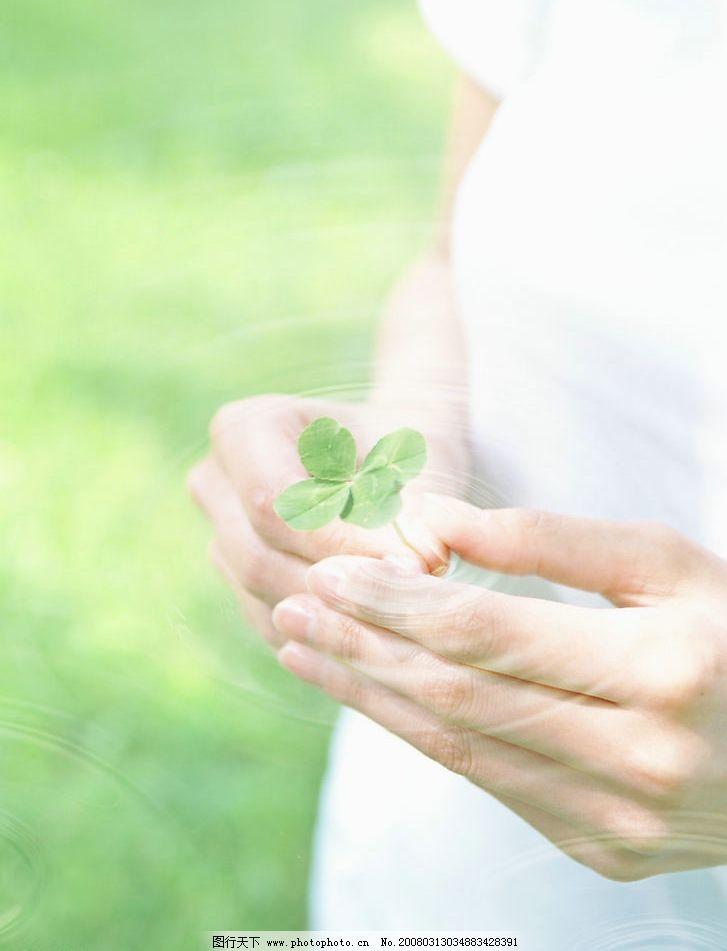 清新环保图片 清新 环保 自然景观 自然风景 最清新的环保素材照片