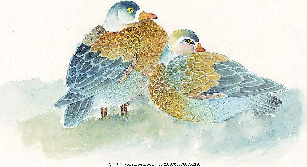 鸳鸯 水彩 国画 水墨画 文化艺术 绘画书法 设计图库 72 jpg