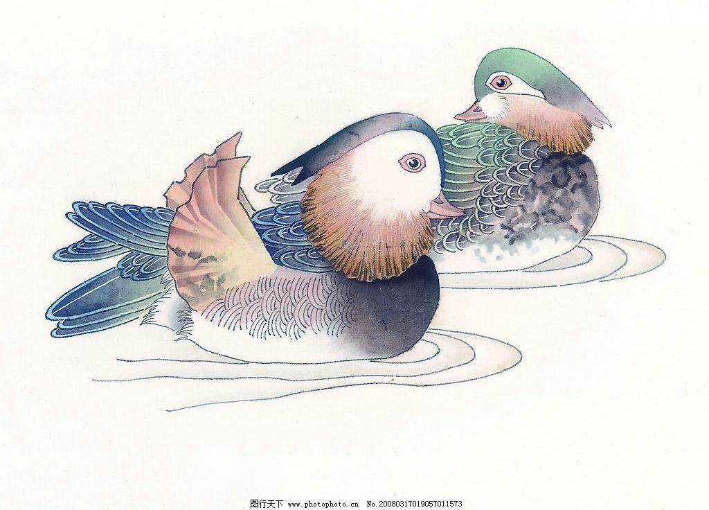 鸳鸯 水彩 国画 游泳 水墨画 文化艺术 绘画书法 设计图库 72 jpg