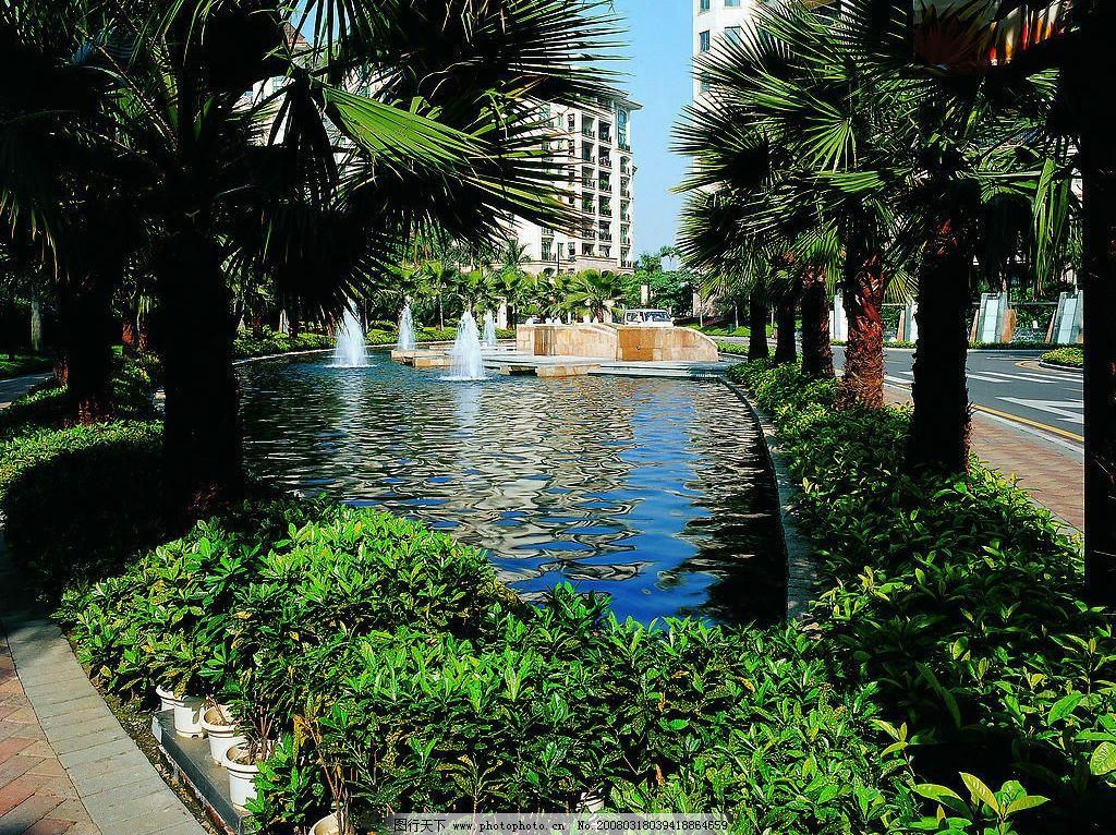 广州星河湾 小区 园林 景观 花草 灌木 社区 规划 房产 房地产